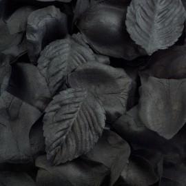 Black Paper Rose Petals