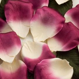 Ivory & Fuschia Paper Rose Petals