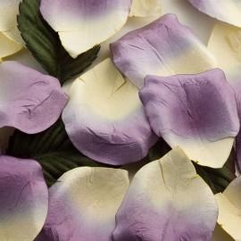 Lilac Paper Rose Petals