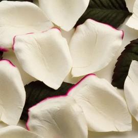 Mauve Paper Rose Petals