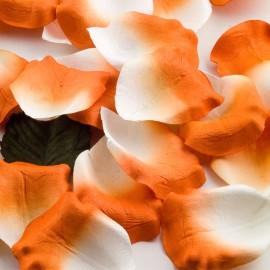 Orange Paper Rose Petals