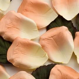 Peach Paper Rose Petals